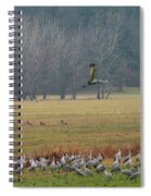 Sand Hill Crane Migration Spiral Notebook