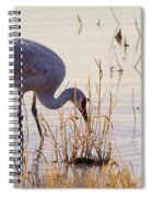 Sand Hill On The Shores Spiral Notebook