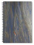 Sand Patterns At Moeraki Spiral Notebook