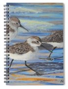 Sand Pipers Spiral Notebook