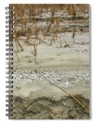 Sand Stone And Reeds Spiral Notebook