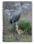 Sandhill 9 Spiral Notebook