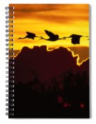 Sandhill Crane At Sunset Spiral Notebook