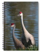 Sandhill Crane Couple By The Pond Spiral Notebook