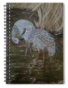 Sandhill Crane Couple Spiral Notebook