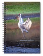 Sandhill Crane Painted Spiral Notebook