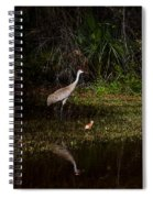 Sandhill Cranes And Chicks Spiral Notebook