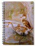 Sandhill Cranes Chicks First Bath Spiral Notebook