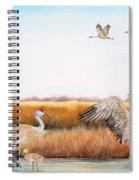 Sandhill Cranes-jp3159 Spiral Notebook