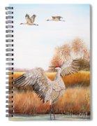 Sandhill Cranes-jp3161 Spiral Notebook