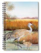 Sandhill Cranes-jp3162 Spiral Notebook