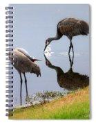 Sandhill Cranes Reflection On Pond Spiral Notebook