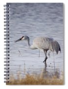 Sandhill On The Shore Spiral Notebook