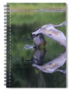 Sandhill Retreat Spiral Notebook