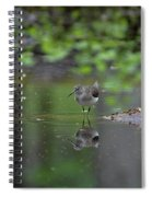 Sandpiper In The Smokies Spiral Notebook