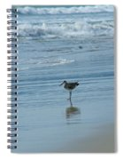 Sandpiper On The Beach Spiral Notebook