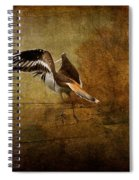 Sandpiper Piping Spiral Notebook