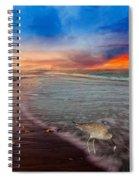 Sandpiper Sunrise Spiral Notebook