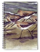 Sandpipers Spiral Notebook