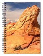 Sandstone Gopher Spiral Notebook