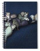 Sandy's Ferrets Spiral Notebook