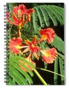 Sanguine Serenity IIi Spiral Notebook