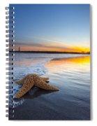 Santa Cruz Starfish Spiral Notebook