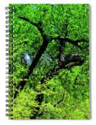Sapes In Nature Spiral Notebook