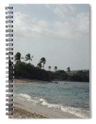 Sapphire Palms Spiral Notebook