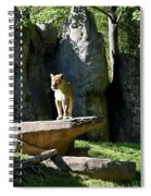 Sarabi Spiral Notebook
