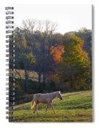 Sarafina Spiral Notebook