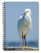 Sarasota Snow Spiral Notebook