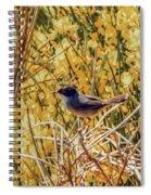Sardinian Warbler Spiral Notebook