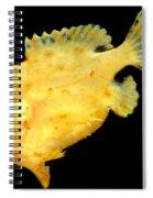 Sargassum Anglerfish Spiral Notebook