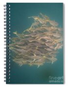 Sargo Spiral Notebook