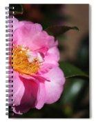 Sasanqua Camellia Spiral Notebook
