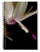 Satin Petals Spiral Notebook