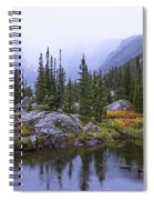 Saturated Forest Spiral Notebook