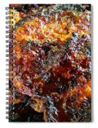 Saucey Thighs Spiral Notebook