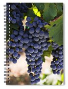 Sauvignon Grapes Spiral Notebook