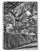 Savannah Perspective - Black And White Spiral Notebook