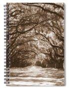 Savannah Sepia - Glorious Oaks Spiral Notebook