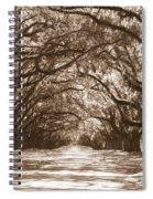 Savannah Sepia - Glorious Oaks Spiral Notebook