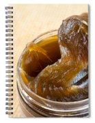 Savon Noir Black Soap Portion Spiral Notebook