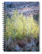 Sawtooth National Forest 2 Spiral Notebook
