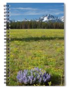 Sawtooths And Wildflowers Spiral Notebook
