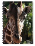 Say Cheese Card Spiral Notebook