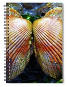 Scallop - Close Up Spiral Notebook