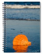 Scallop Seashell On The Beach Spiral Notebook