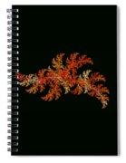 Scallywagg Spiral Notebook